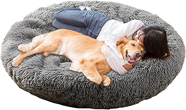 for Deep Relaxing Sleep Wooden Frame Dream Catcher Design Beige Length 74 cm Width 42 cm Dog Sofa Dog Bed with Extra Thick Soft Cushion Depth 28 cm with Zip