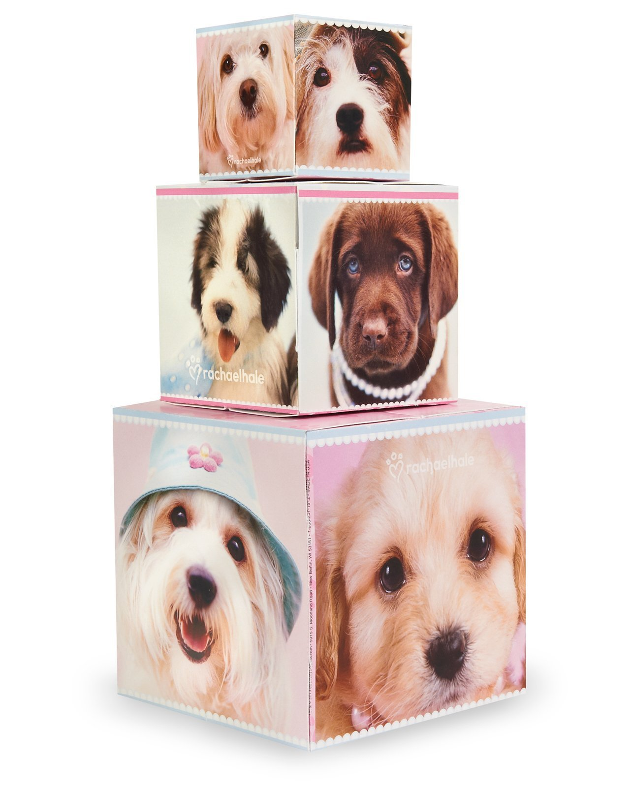 BirthdayExpress Rachael Hale Glamour Dogs Party Supplies - Centerpiece Gift Boxes