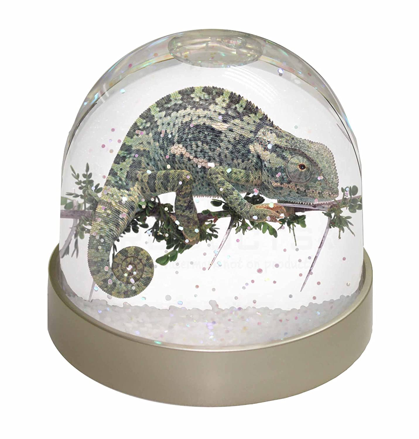 Advanta Chameleon Lizard Photo Snow Globe Waterball Stocking Filler Gift, Multi-Colour, 9.2 x 9.2 x 8 cm Advanta Products AR-L5GL