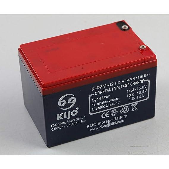 Amazon.com: Repl 6-DZM-14 SLA - Batería para patinete ...