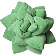 Succulent Cactus Décor Pillow for Green or Garden Lovers Green Nursery Living Room Accent 3D Shape to Create Your Life Size Lush Home Terrarium - SAGE Green
