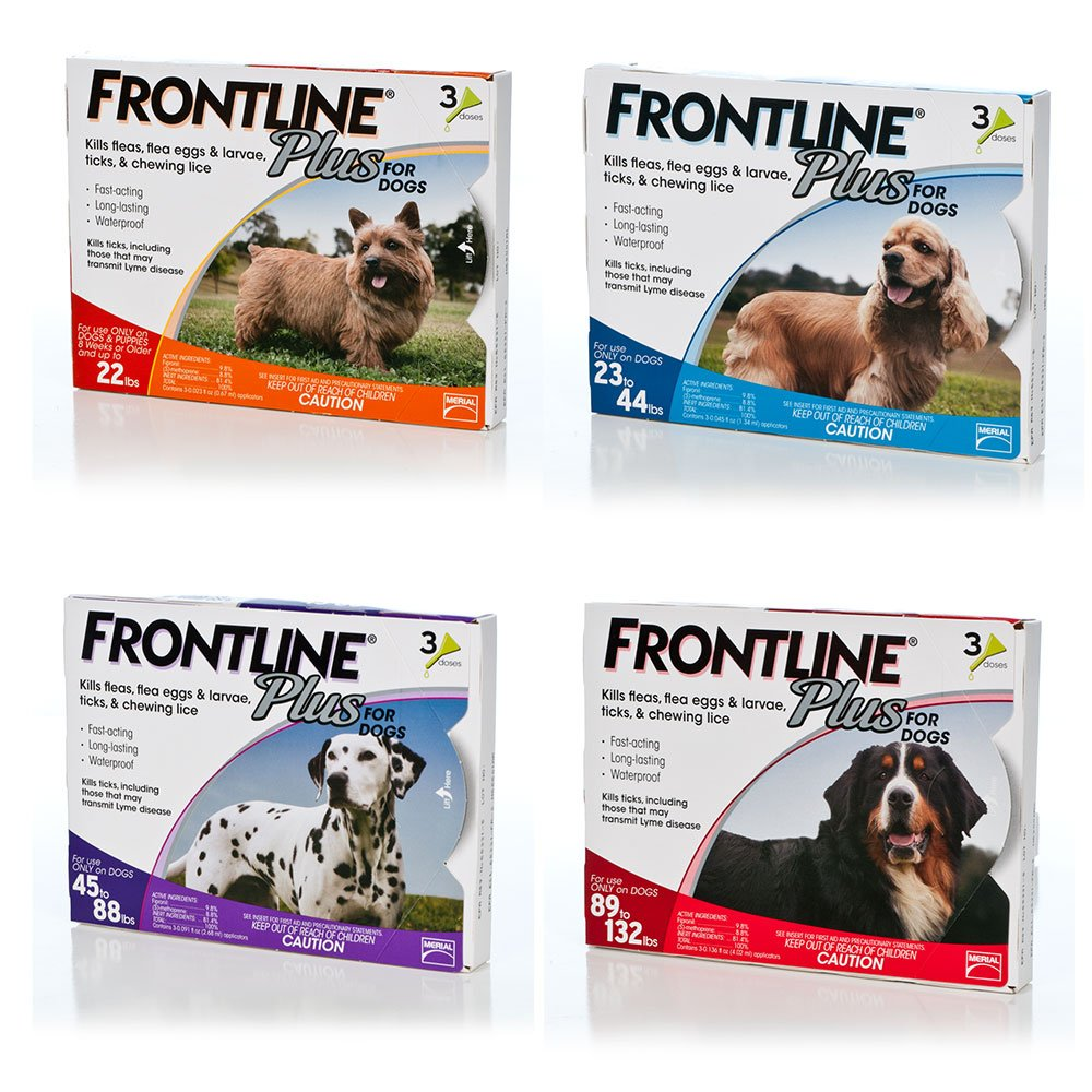 Frontline Plus Medium Dog by Frontline