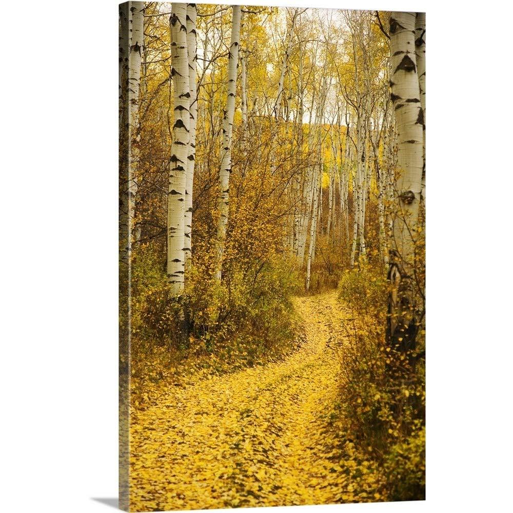 Ron Dahlquistプレミアムシックラップカンバスウォールアートプリント題名コロラド州、イエローAspen Leaves on Country Road 32