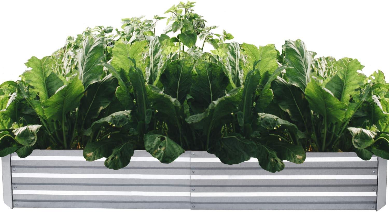 ONCEMORE Galvanized Raised Garden Beds Metal Planter Box Steel Large Vegetable Flower Bed Kit Garden Box (Galvanized 72x36x11.8 INCH)