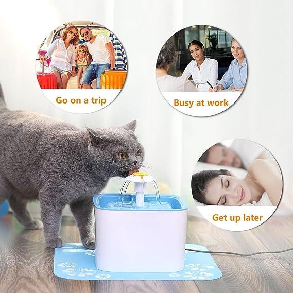 JemPet Pets Fuente-Perros Gatos Dispensador de Agua-Fuente de Agua Saludable e higiénica con el reemplazo de Bolsas filtrantes y Agua suavizante: Amazon.es: ...