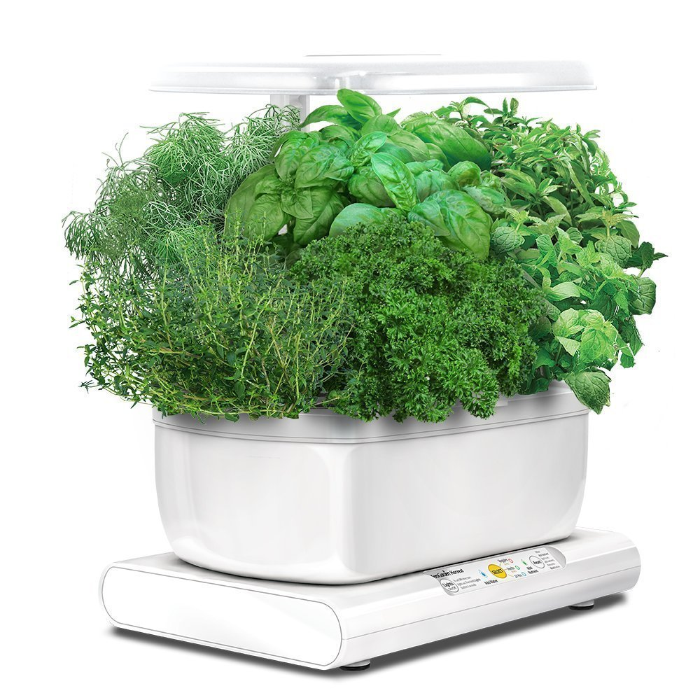 AeroGarden Harvest 2015 with Gourmet Herb Seed Pod Kit, White by AeroGrow