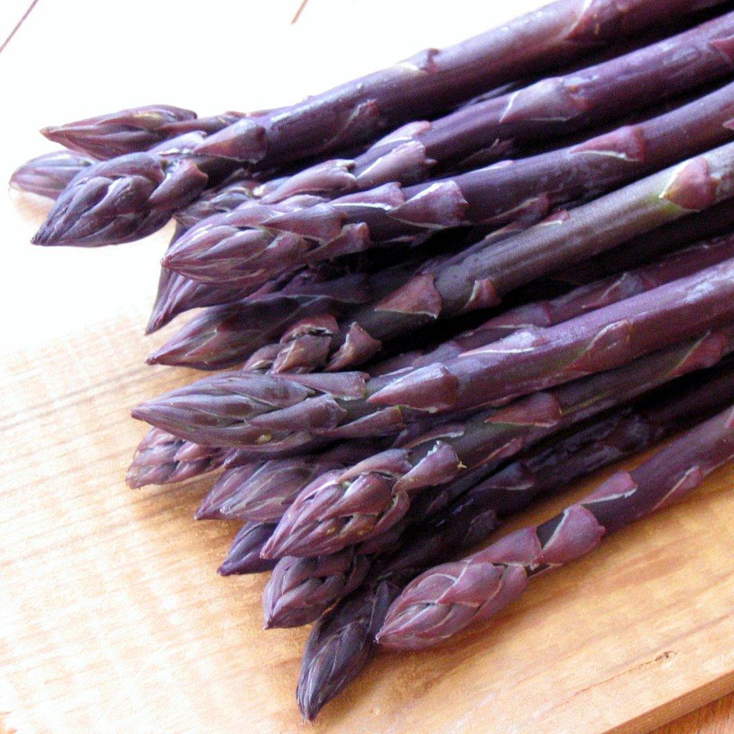 Purple Passion Asparagus Plants Crowns Roots Bare Root 250 Ea
