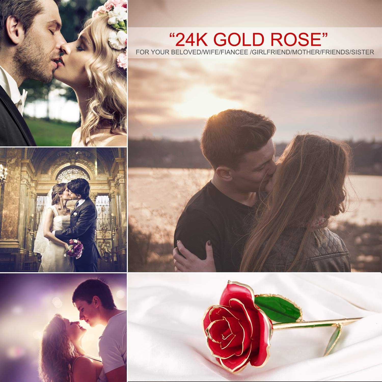 Rosa de Oro 24K, Rosa Chapada en Oro con Caja de Regalo para Madre Amor Amigos, Rosa Bañada en oro para el Día de San Valentín Rosa 24k Artificial con Soporte para Aniversario Cumpleaños (Rojo)