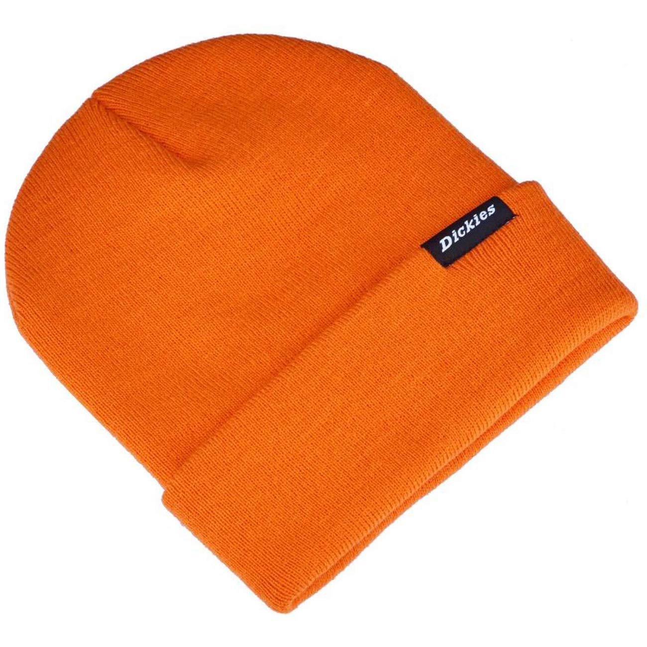 Dickies Streetwear cap Alaska, Cappello Uomo 08 410153