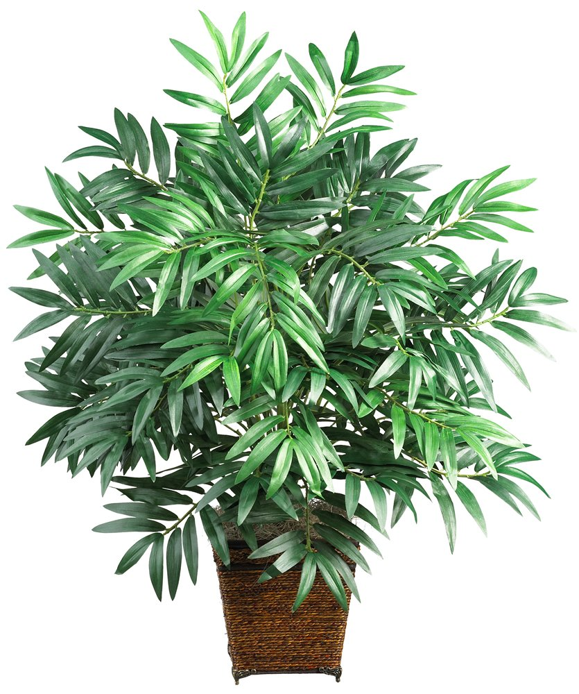 Decorative Indoor Trees Amazoncom Nearly Natural 6556 Bamboo Palm With Wicker Basket