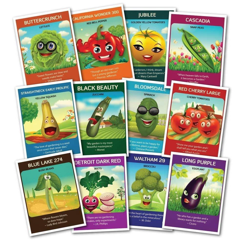 Zziggysgal Heirloom Veggie Seeds Set, Non GMO, Easy to Follow Instructions (12 Varieties) by zziggysgal