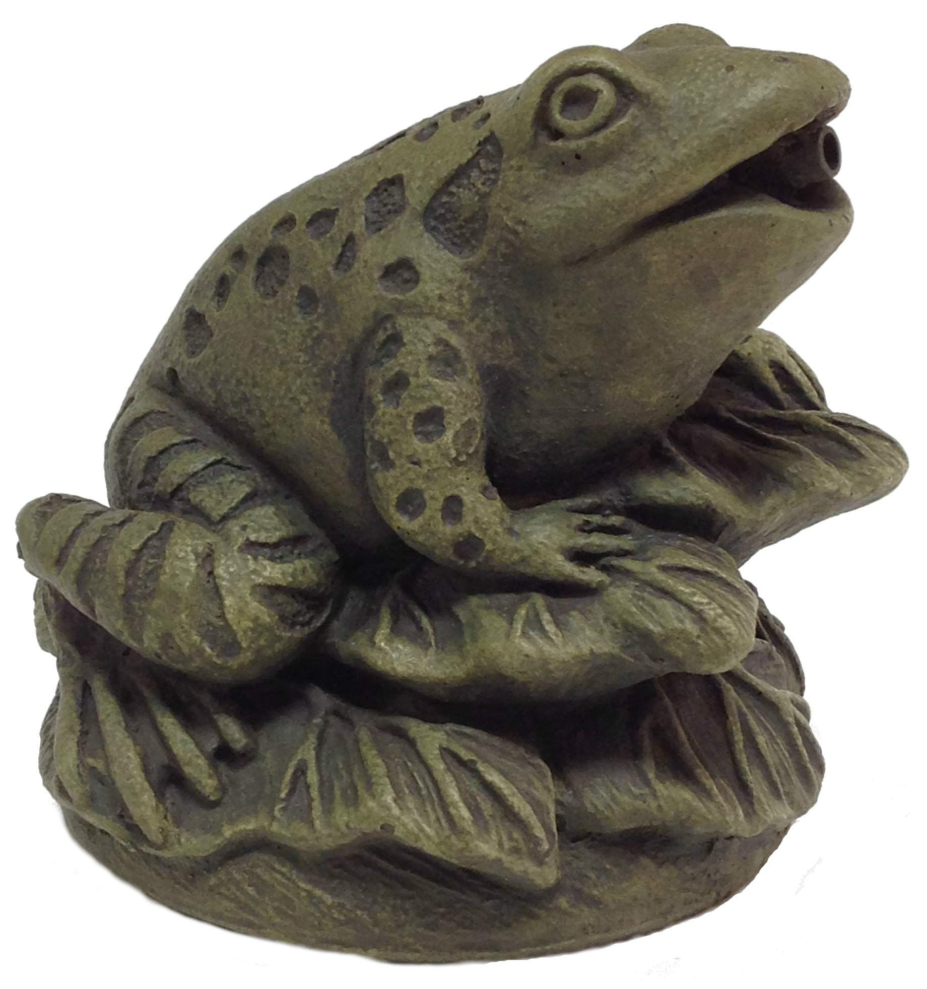 Massarelli's Frog On Leaves Plumbed Spitter - Solid Cast Stone Lifelike Statue, Great Pond and Garden Gift Idea, Durable and Fun Sculpture Art by Massarelli's