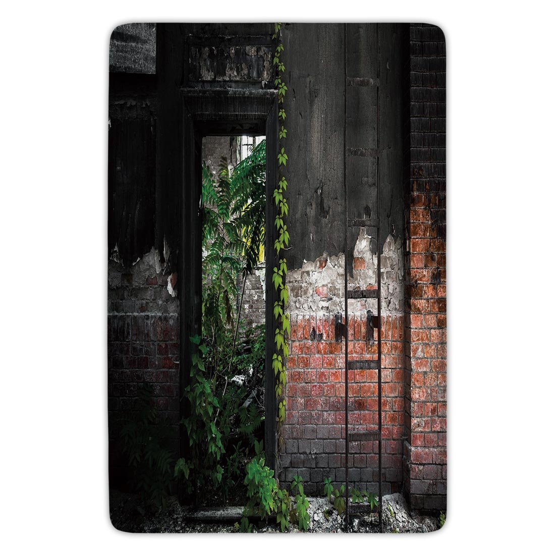 Bathroom Bath Rug Kitchen Floor Mat Carpet,Industrial Decor,Old Door Opening in a Desolate Industry Building Brick Wall Ivy Plants Decorative,Multicolor,Flannel Microfiber Non-slip Soft Absorbent