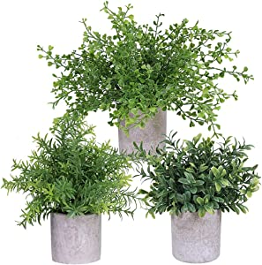 "3 Pack Mini Potted Plants Artificial Green Eucalyptus Boxwood Rosemary Greenery in Pots Faux Potted Herbs Small Houseplants 8.4""-9.3"" Tall for Indoor Greenery Home Bedroom Kitchen Farmhouse Decor"