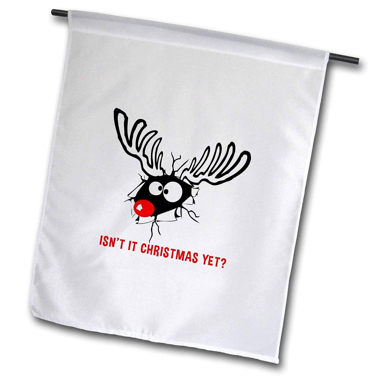 Amazon.com : 3dRose Alexis Design - Holidays Christmas - Funny ...