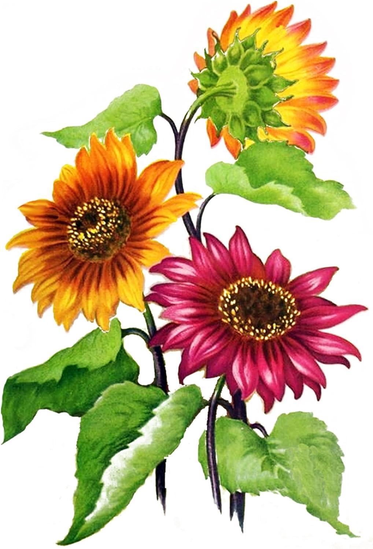 Sunflowers FLONZ 0686 Vintage Flowers Waterslide Decals 4pcs 2.5x3.5each