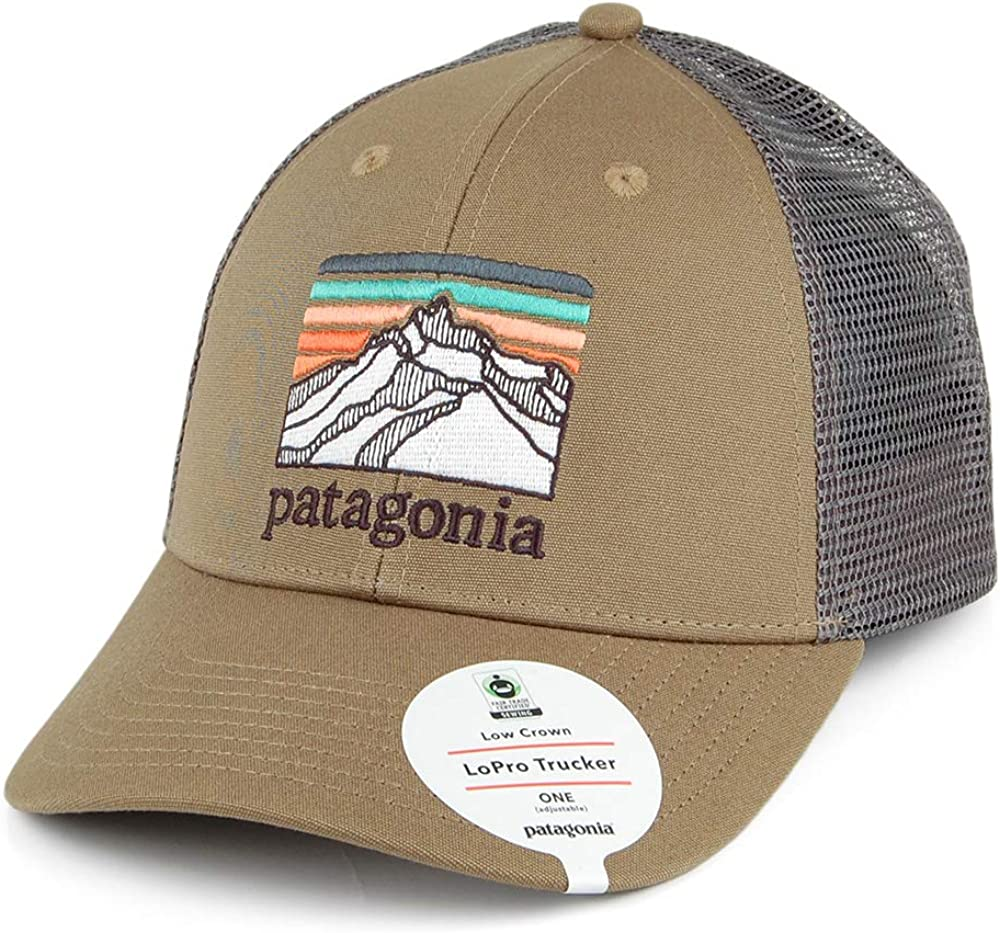 Patagonia Line Logo Ridge LoPro Trucker Hat (Sage Khaki): Amazon ...