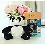 Finn The Panda