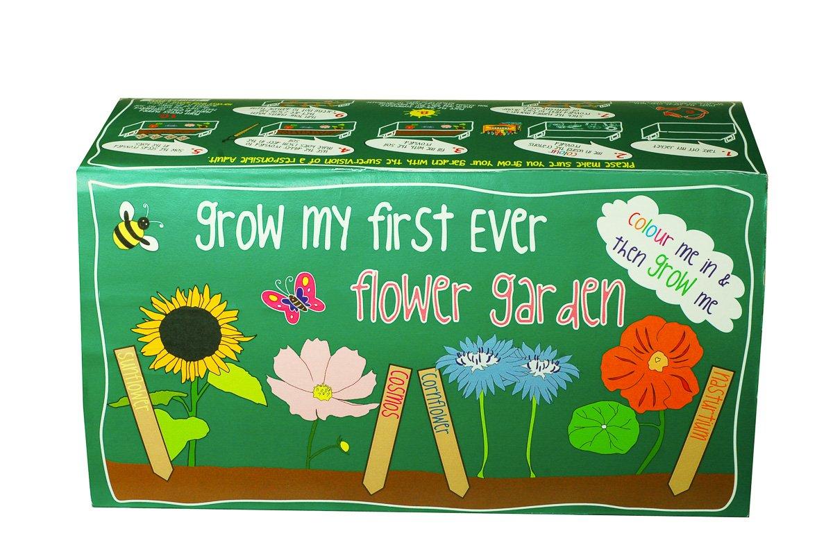 Pflanz-Set Meine ersten Blumen