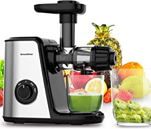 Sagnart Portable Slow Juicers Machine