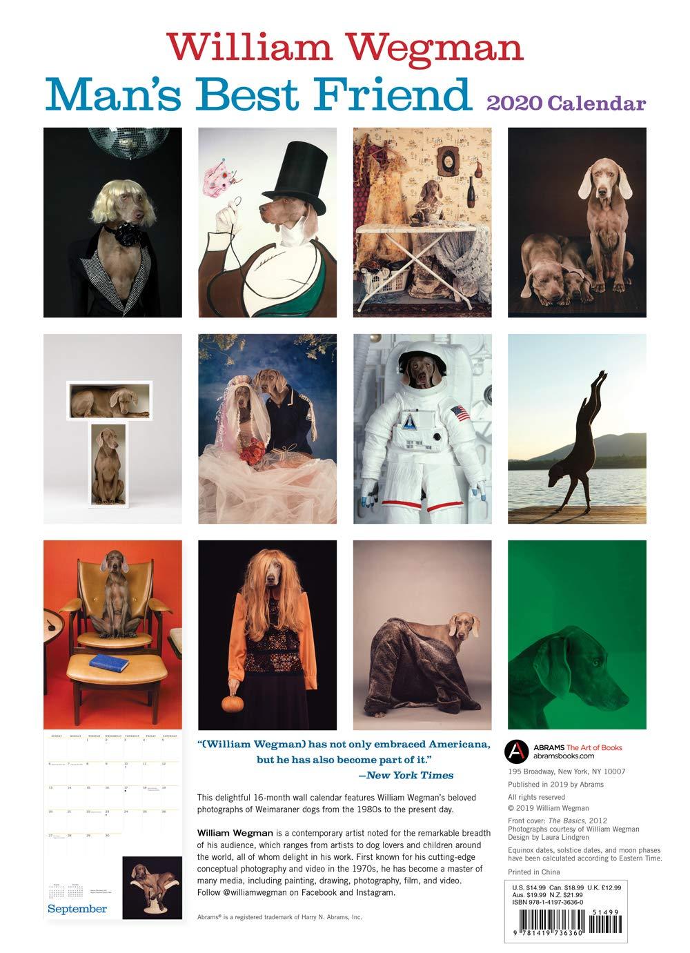 Best Books For Men 2020 Amazon.com: William Wegman Man's Best Friend 2020 Wall Calendar