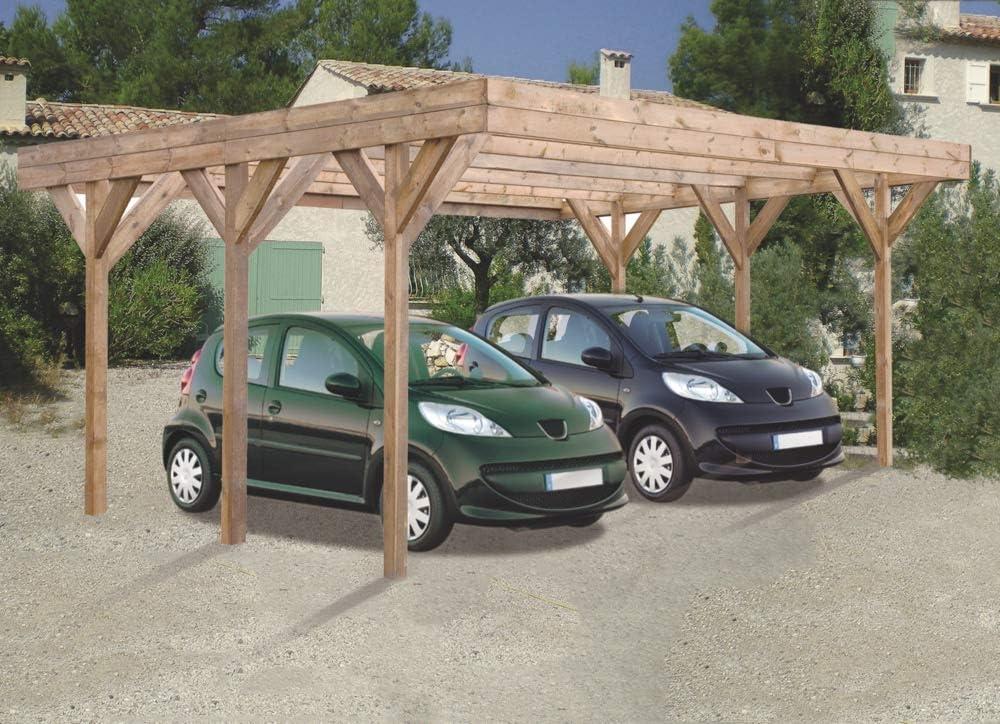 Madeira – Madeira – Carport 2 voiturse madera tratada a presión – Double Enzo: Amazon.es: Jardín