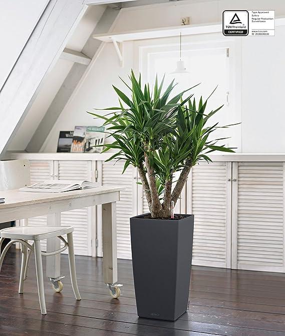 lechuza cubico color 30 set completo vaso in resina per piante colore ardesia lechuza uk 13138. Black Bedroom Furniture Sets. Home Design Ideas