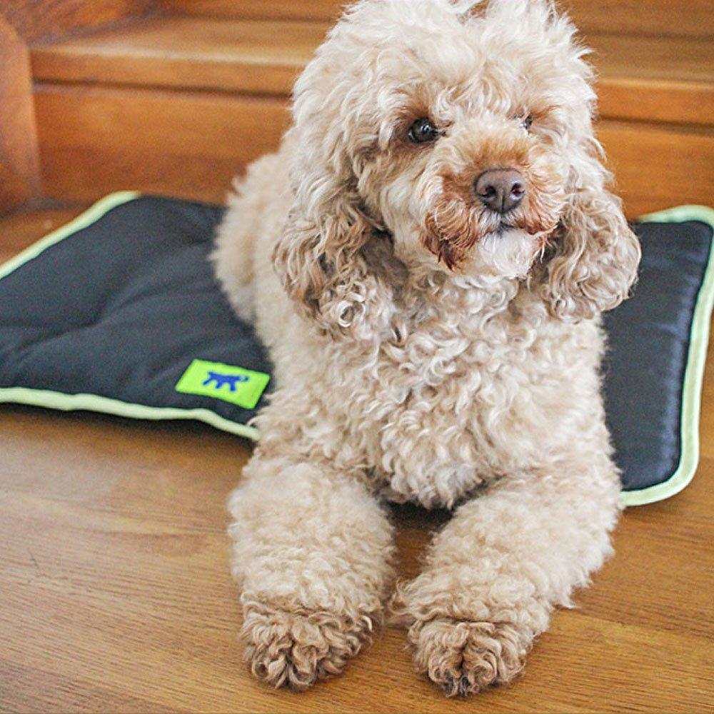 Cojin Jolly para caseta Domus Canada y Baita de Ferplast: Amazon.es: Productos para mascotas