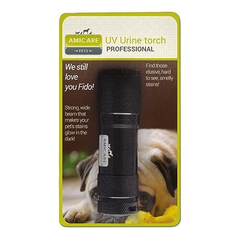 Pet Detector de Orina Negro Luz Ultravioleta linterna – Buscador de manchas de orina profesional para