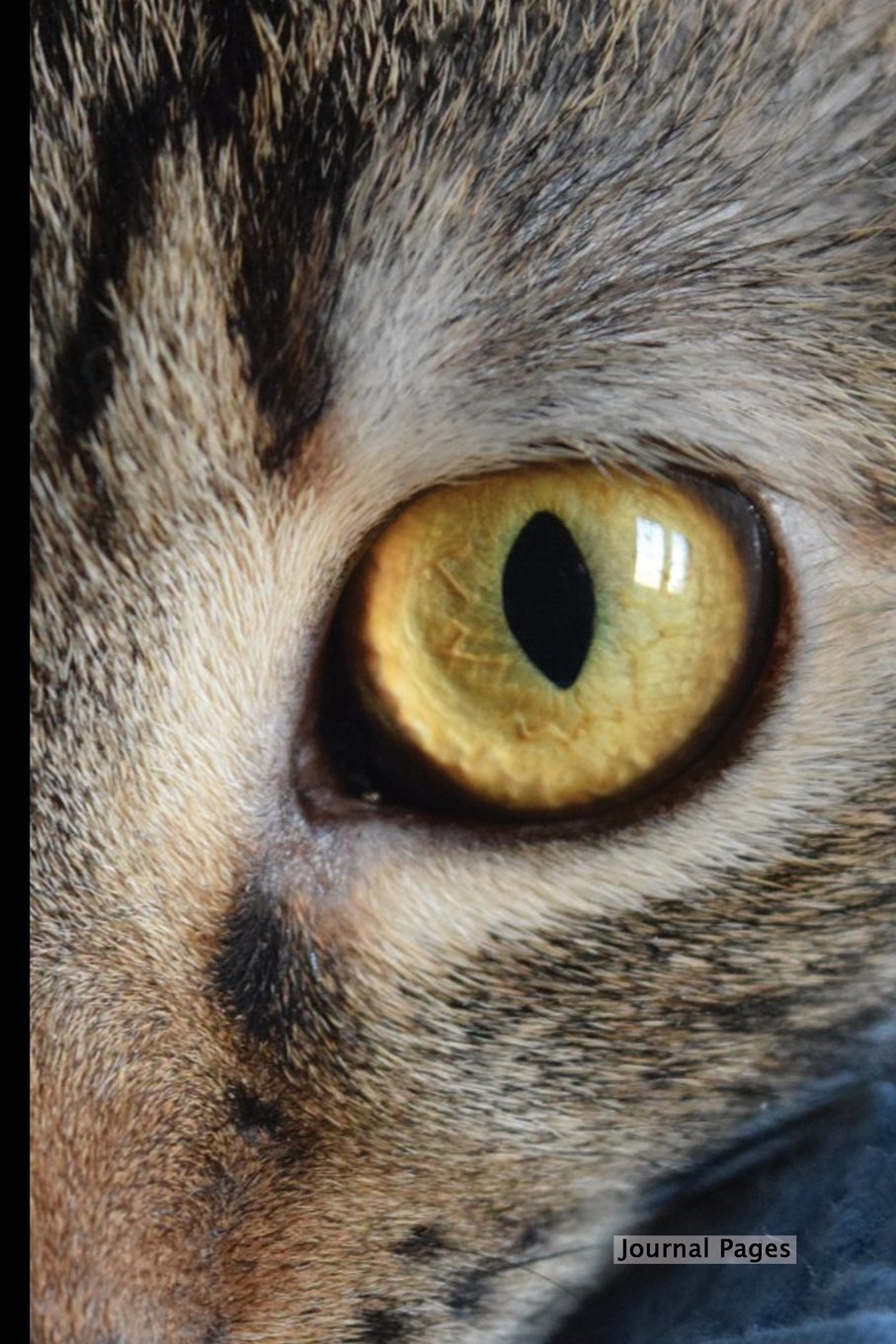 """Journal Pages - Yellow Cats Eye (Unruled): 6"""" x 9"""", Classic Notebook- Unlined Plain Journal,for Notes,sketches, 100 Pages (Durable Cover) PDF"""