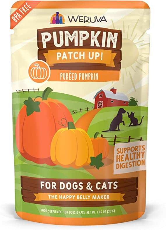 is pumpkin filling good for dogs