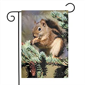 Cute Squirrel Garden Flags Home Indoor & Outdoor Welcome Decorations,Waterproof Polyester Yard Decorative for Game Family Party Banner