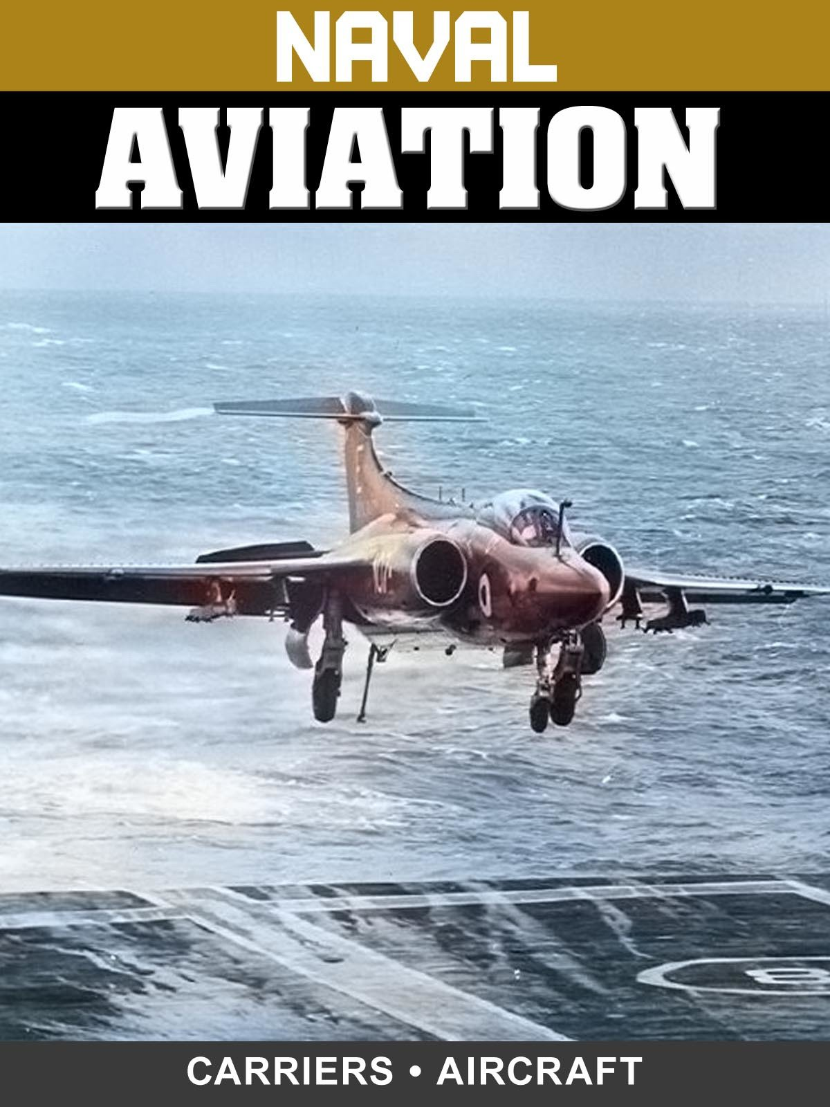 Naval Aviation: Carriers & Aircraft