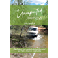 Unexpected Journeys: LIFE'S LESSONS FROM REMOTE AUSTRALIAN ABORIGINAL AND NATIVE AMERICAN COMMUNITIES