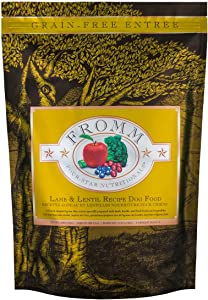 Fromm Family Foods 4 Star Lamb And Lentil 26 Lb Dry Dog Food 1 Pack