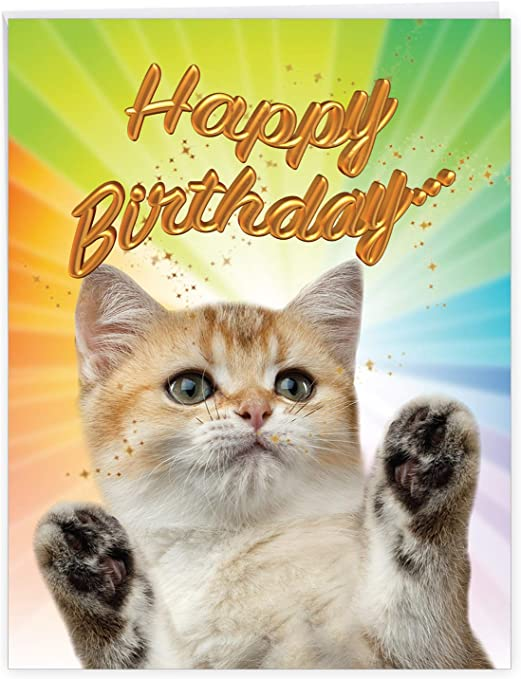 Birman Cat Birthday Card The Cat Card Gallery JLG159FBW by Juniperlove Greetings