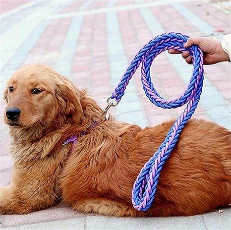 Correa de Perro con Collar, Suave Cuerda de Entrenamiento Escalada ...