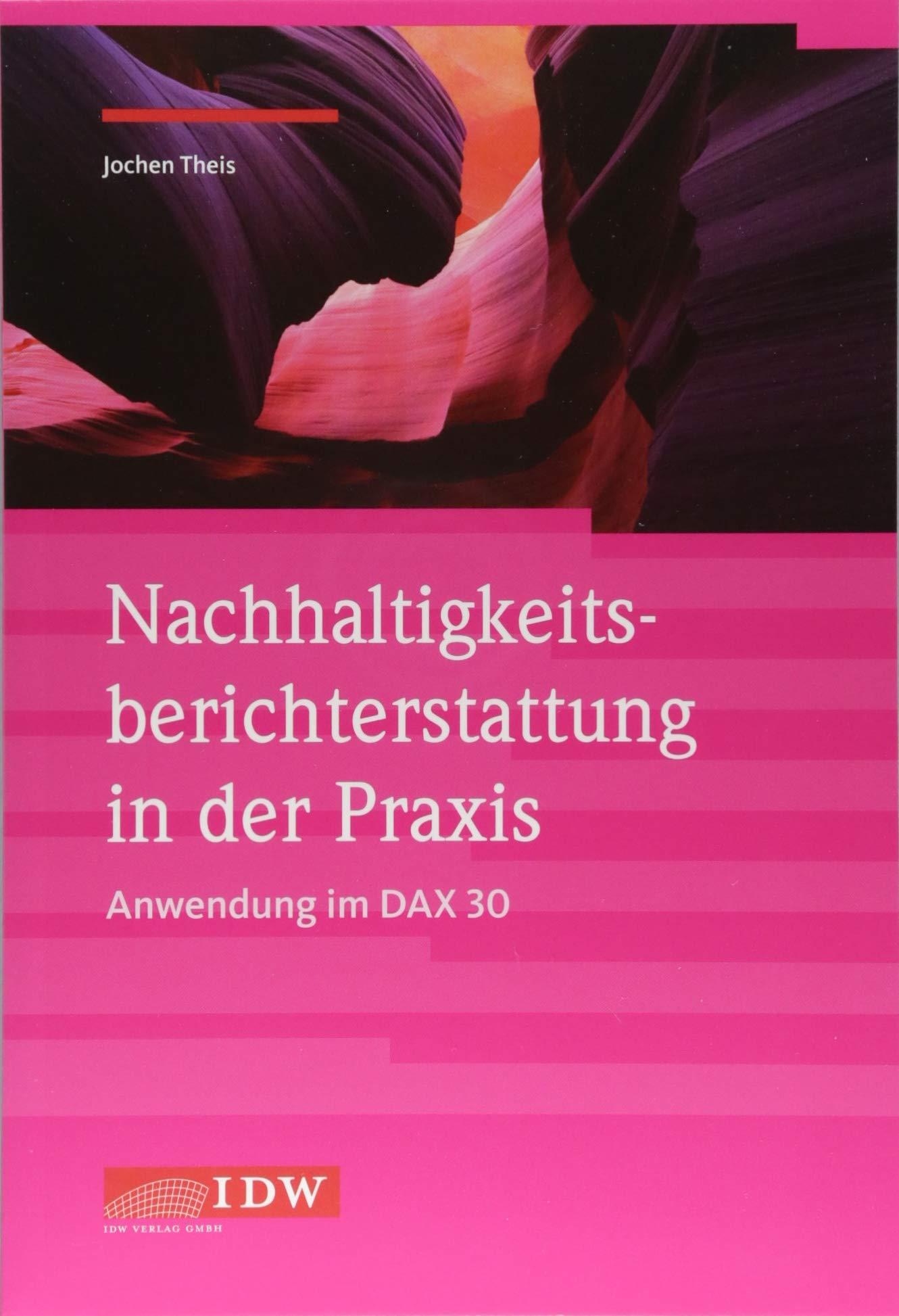 Nachhaltigkeitsberichterstattung in der Praxis - Anwendung im DAX 30 Taschenbuch – 1. Juni 2018 Jochen Theis IDW 3802121422 Betriebswirtschaft