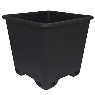 Trade 7 Gallon, Re-usable Square Nursery Pot, Case of 5: Garden & Outdoor