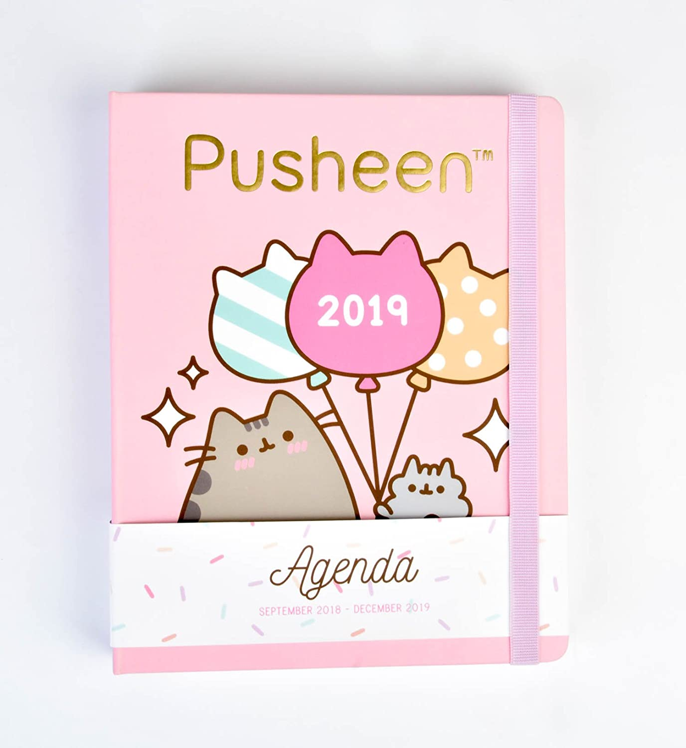Grupo Erik Pusheen The Cat- Agenda 16 Meses 2018/2019 Semana Vista