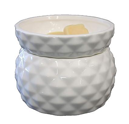OBI Original Candle Warmer - Electric 2-in-1 Tart Burner - 2 Piece Ceramic  Melt Wax Cube Melter - Fragrance Air Freshener - Eliminate Odors - White