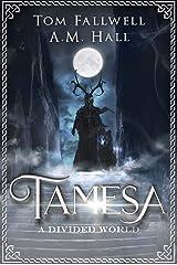 Tamesa: A Divided World: Epic Fantasy Kindle Edition