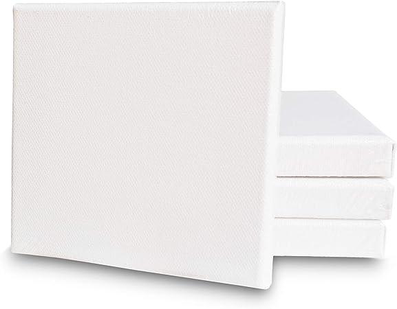 Eono Canvas Panels 15cm x 10cm Set of 6 Blank 100/% Cotton