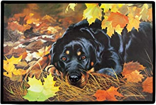 product image for Fiddler's Elbow Rottweiler Doormat Art by Pollyanna Pickering