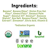 Barnana Organic Crunchy Banana Brittle - Toasted