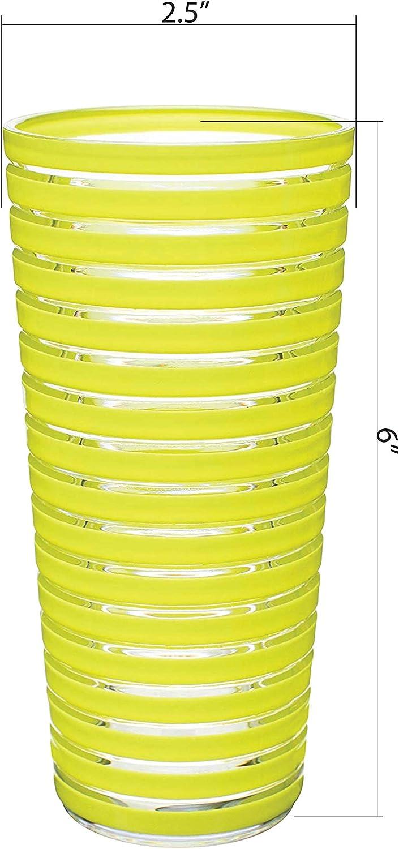 Kiwi Plastic Tumbler Zak Designs Stripe 12 oz 6 piece set