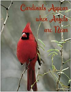 Cardinal Appear When Angels are Near Cardinal Refrigerator Magnet