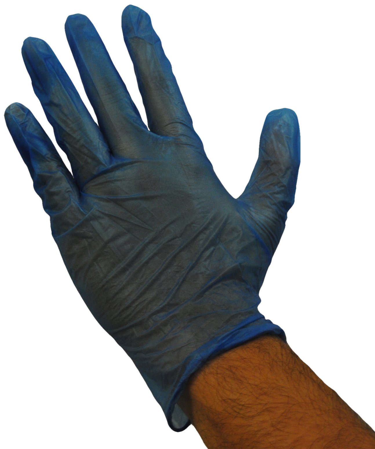 Emerald Shannon Blue Powdered Vinyl Gloves Case X-Large