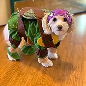 Amazon.com: Rubies Disfraz de Tortugas Ninja Mutantes ...