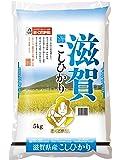 【精米】滋賀県産 白米 コシヒカリ 5kg 平成30年産